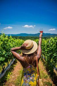 Sonoma Wine Country Tour