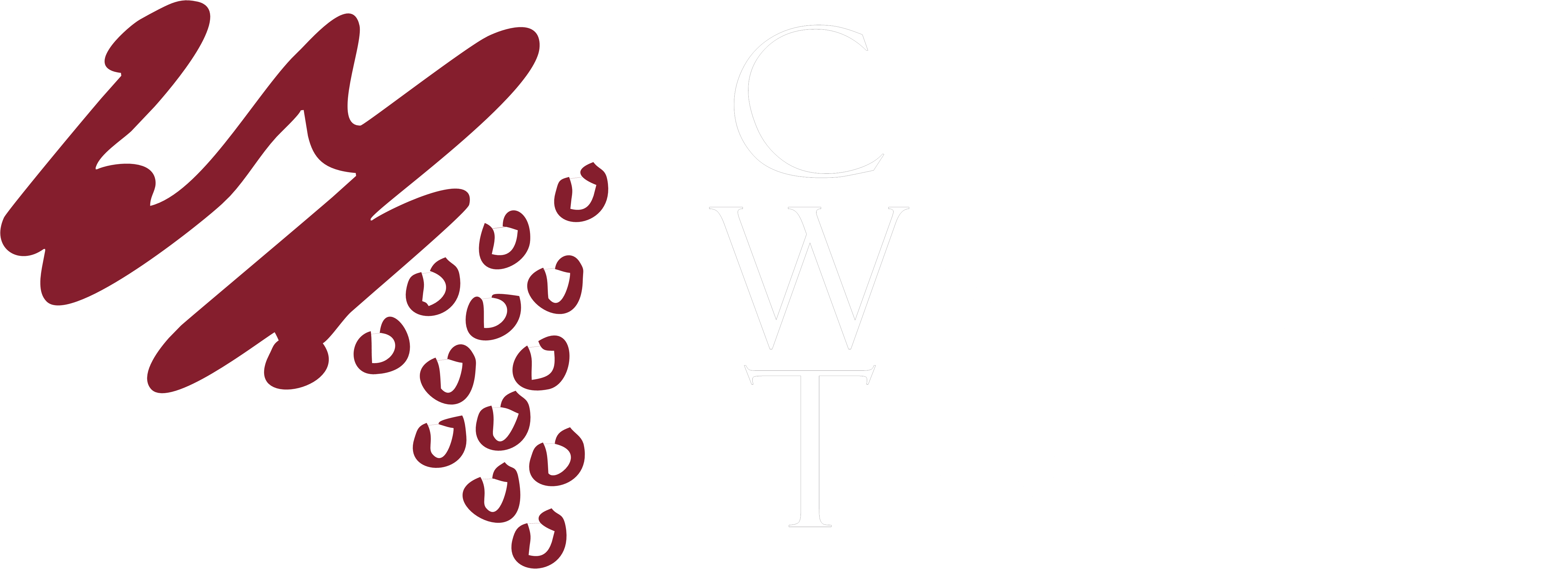 California Wine Tours logo