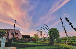 Peju Winery with sunset